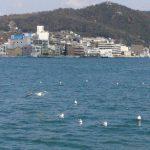 blog_import_5626c809eda46